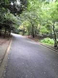 都内某公園20090725.JPG